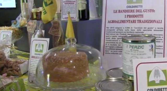 A Expo creatività Made in Italy, liquore di lumaca e carne vegetale – VIDEO