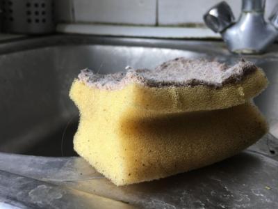 Come igienizzare le spugne dei piatti nel modo giusto?