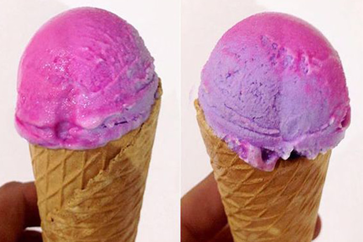Camaleonte gelato