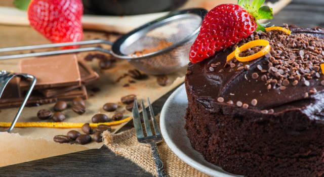 Torta semplice al cacao dolcificata con stevia