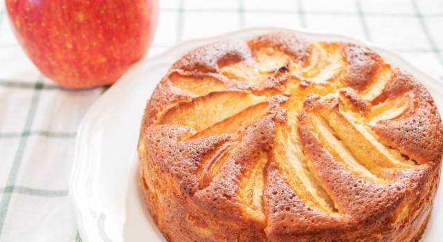 Torta di mele e yogurt soffice: la ricetta del dolce delizioso, anche con il Bimby