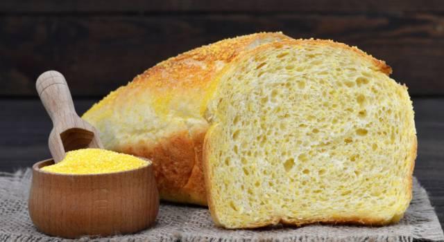 Fatto in casa è meglio: ecco la ricetta del pane di mais