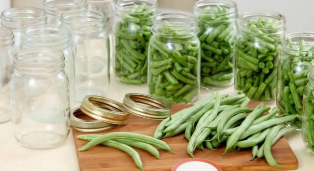 Come conservare i fagiolini: consigli e suggerimenti utili