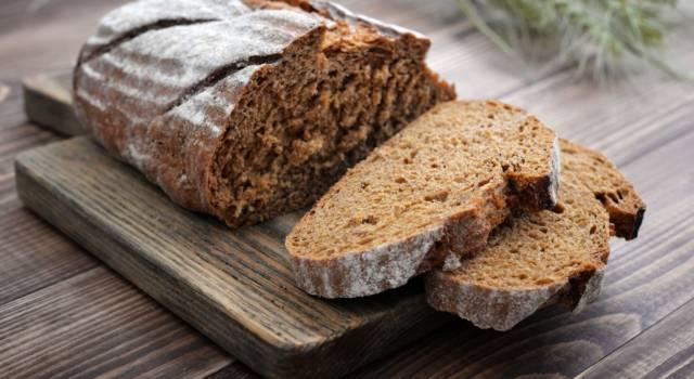 Pane di segale fatto in casa, un lievitato ricco di sapore