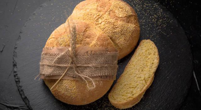 #iostoacasa con la ricetta del pane senza glutine di mais