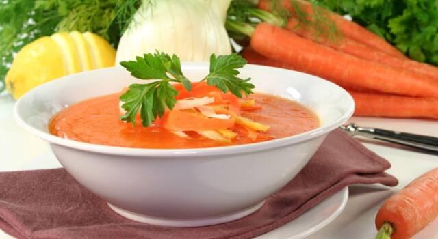Minestra di carote e finocchi: la vellutata vegana e facile da fare!
