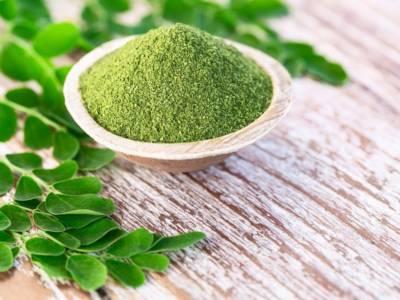 Moringa: proprietà, benefici e usi di questo albero miracoloso!