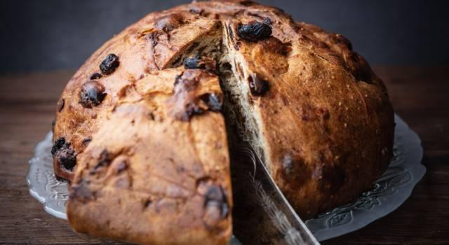 Pane di Natale modenese: un dolce gustoso e tradizionale