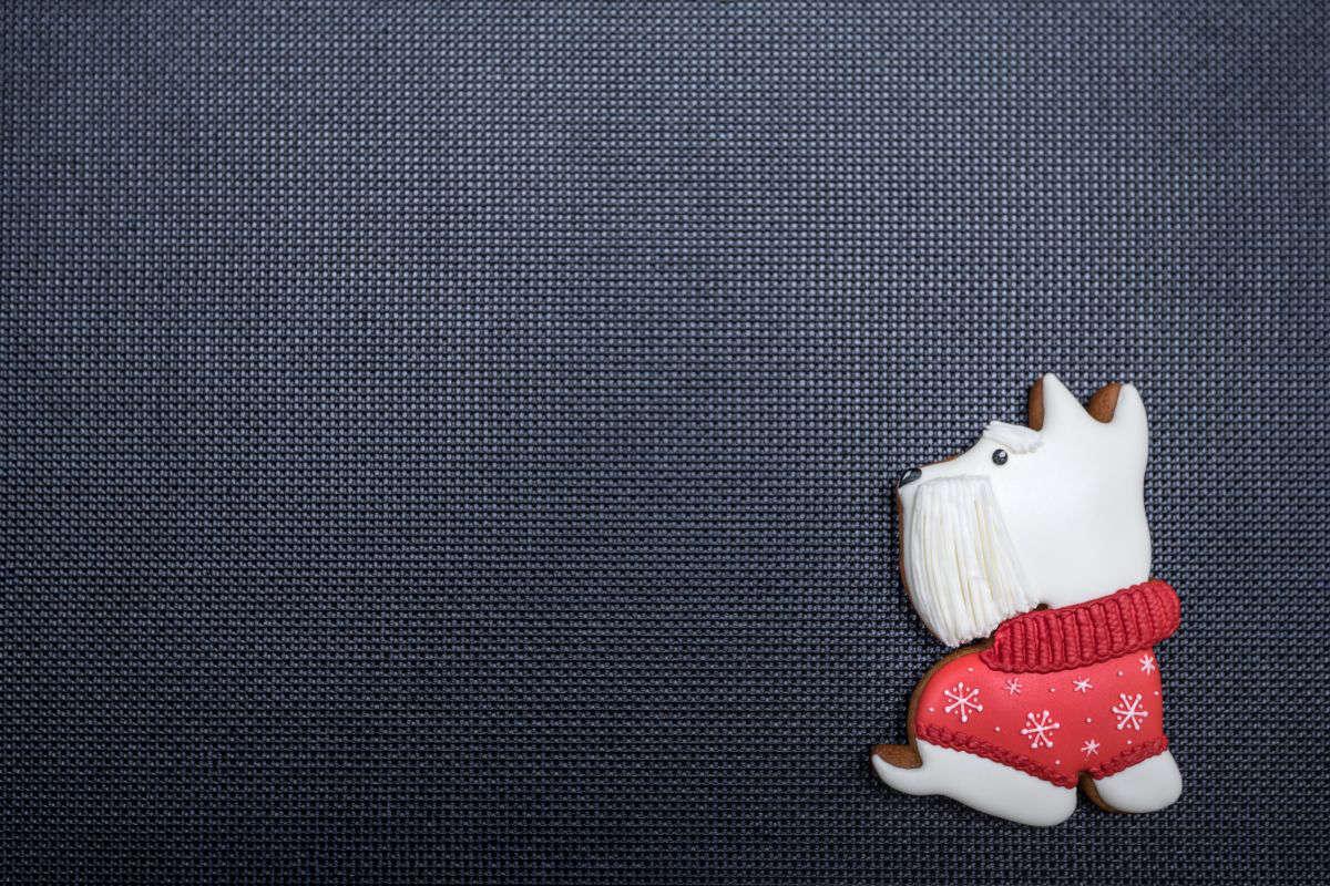 biscotto decorato a forma di cane