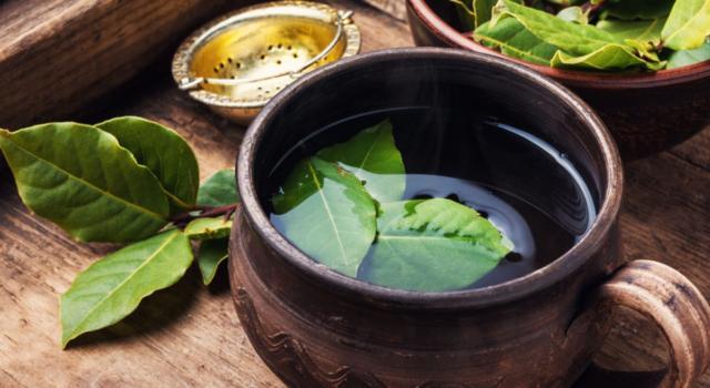 I benefici dell'infuso di alloro contro il mal di pancia