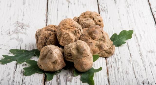 Tartufo delle Crete senesi: ricette e caratteristiche di questo pregiato ingrediente