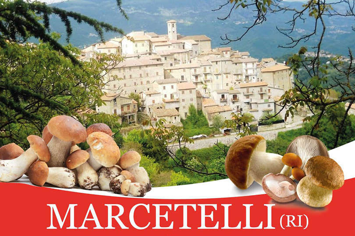 Festa del fungo porcino di Marcetelli