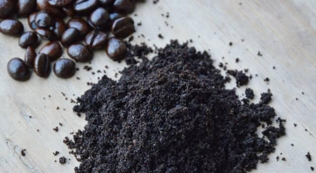 Come riutilizzare i fondi di caffè?