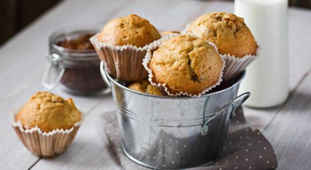Muffin alle pesche fresche, delizioni e perfetti per la colazione!