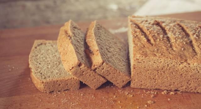 Ideale per gli intolleranti al glutine: ecco il pane con farina di teff