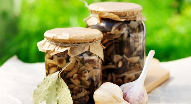 Funghi sott'olio fatti in casa: davvero squisiti