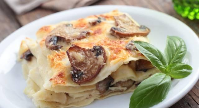 Lasagne ai funghi, un piatto unico incredibilmente gustoso!
