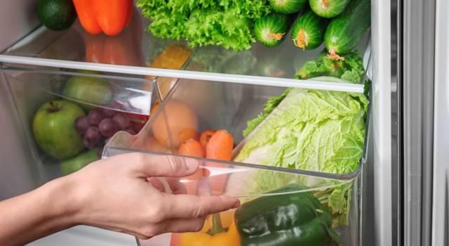 Facciamole durare a lungo! Ecco come conservare le verdure in frigorifero (nel migliore dei modi)