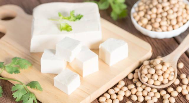 Tofu, tempeh e seitan: cosa sono e quali le differenze