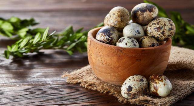 Uova di quaglia: proprietà, cottura e ricette
