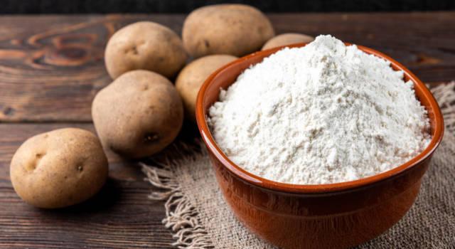 Qual è la differenza tra la fecola di patate e l'amido di mais?