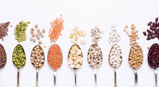 Tutto sui legumi: quali sono, come si cucinano e proprietà di questo superfood