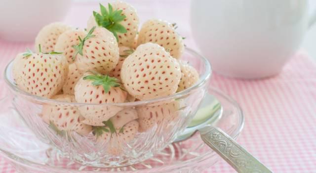 Pineberry, la fragola ananas che ha fatto impazzire il mondo