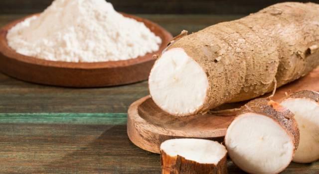 Manioca: ricette e proprietà del tubero tropicale senza glutine