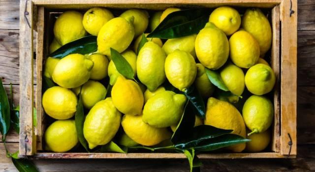 Acido citrico: fa male? Cos'è questo additivo alimentare?