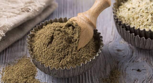 Farina di canapa: cos'è, da dove si ricava e come si utilizza
