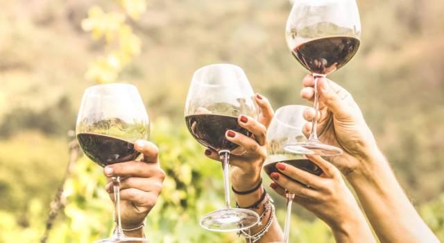 Vino biodinamico e vino vegano: cosa sono e quali le differenze