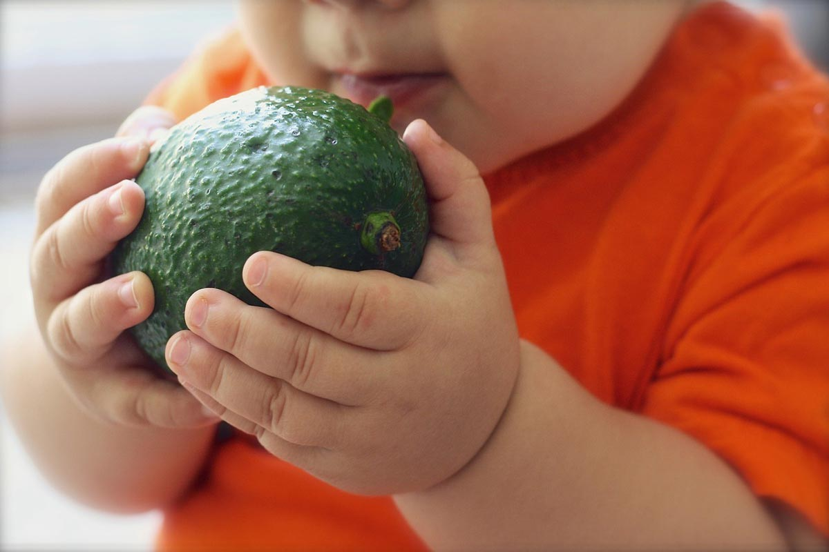 Bambino mangia l'avocado
