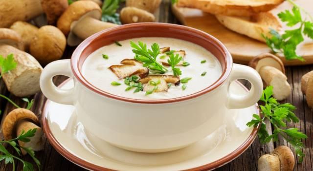 Crema di funghi: ecco come preparare la vellutata deliziosa (anche con il Bimby)