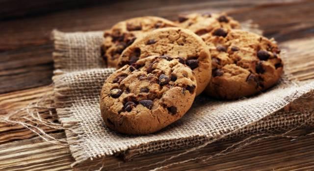 Biscotti, biscotti e ancora biscotti: 10 ricette facili e veloci