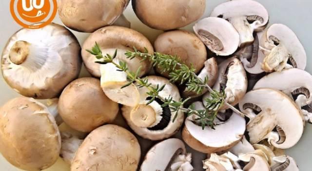 Fusilli con funghi e noci in versione vegan