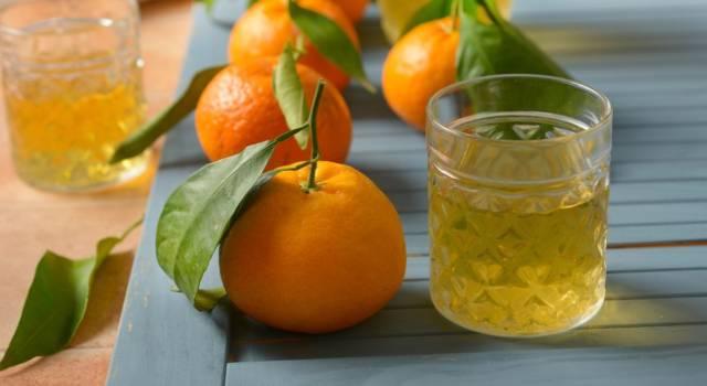 Ricetta del liquore al mandarino fatto in casa: buonissimo come digestivo