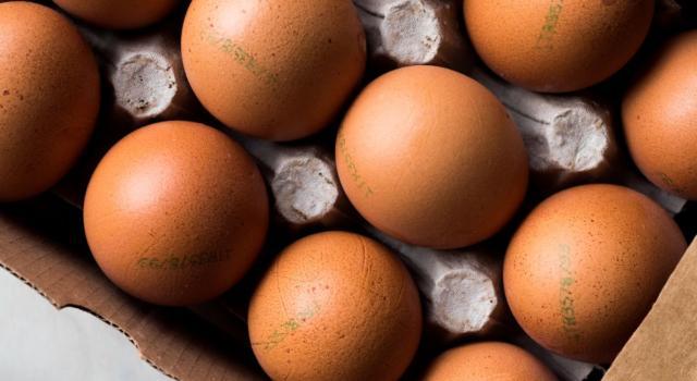 Come si leggono i numeri sulle uova? Ecco la guida completa