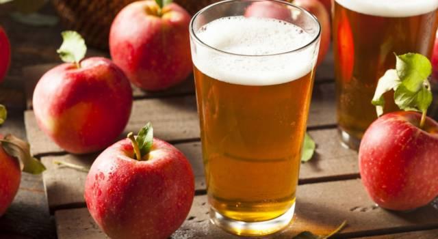 La ricetta del sidro di mele fatto in casa è alla portata di tutti