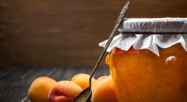 Gelatina di albicocche: la ricetta per farla in casa