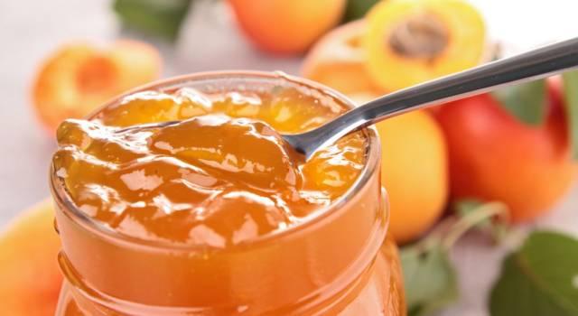 La marmellata di albicocche senza zucchero vi conquisterà