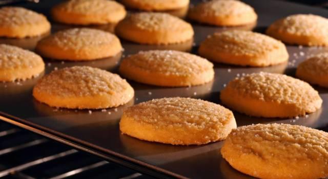 Ammoniaca per dolci: è tossica? A cosa serve? Tutto quello che c'è da sapere