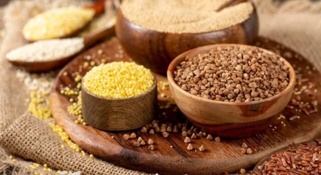 Andiamo alla scoperta dei cereali senza glutine!