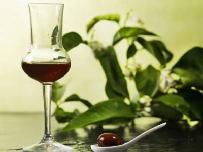 Un digestivo insolito e perfetto da regalare: il liquore di giuggiole