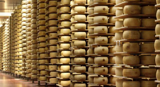 I formaggi all'estero piacciono molto: ecco i dati del primo semestre 2021