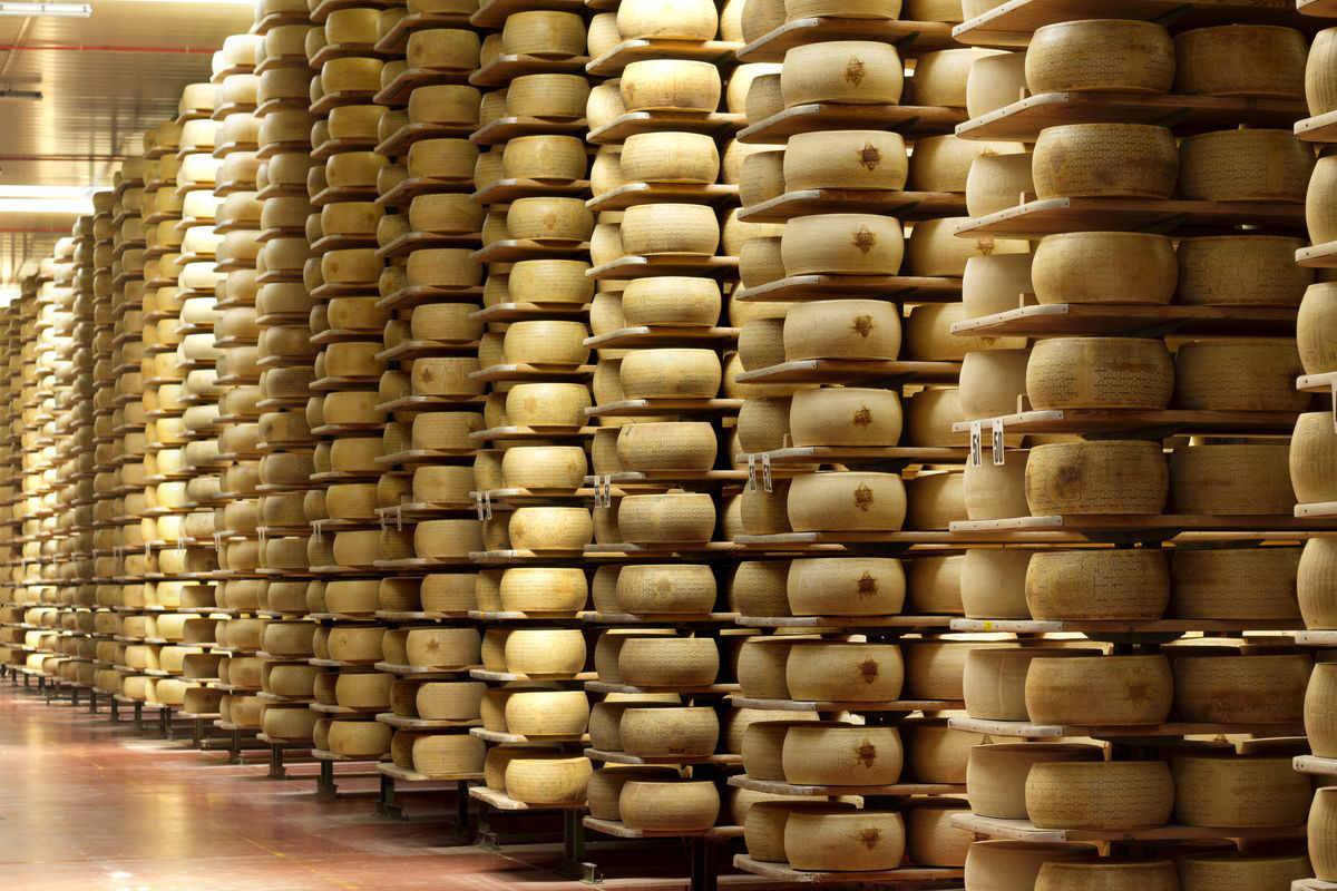 Forme di formaggio