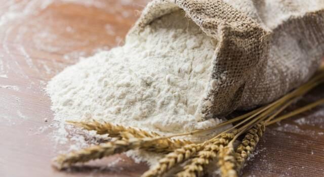 Gli imperdibili consigli su come conservare la farina