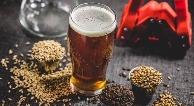 Birra fatta in casa: tutto quello che dovete sapere dalla A alla Z