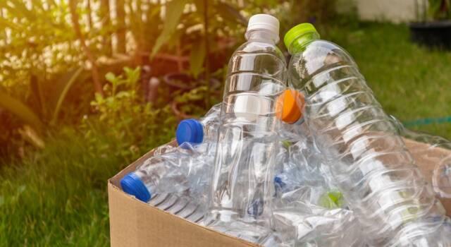 Le bottiglie di plastica hanno scadenza? Ecco tutto ciò che dovete sapere