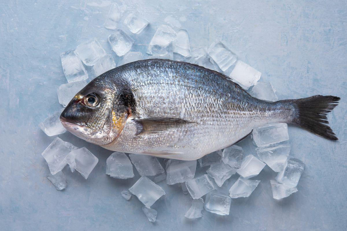 Abbattimento pesce